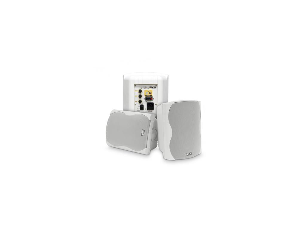 Sistema de sonido amplificado SKP Sk-206A de 2 vías