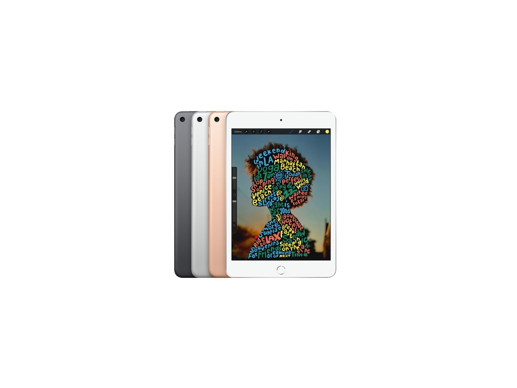 Apple iPad Mini 5 64GB - WIFI - Color gris